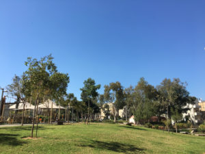 סטודיו טיליה להשכרה לפי שעה בתל אביב