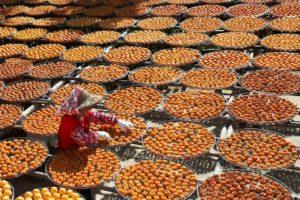 השילוש הסיני הקדוש | תזונה | שמעון פנחסוב - מטפל בשיאצו וטווינא | טיליה רפואה משלימה