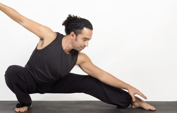 שיעורי יוגה ברוח השאדו יוגה