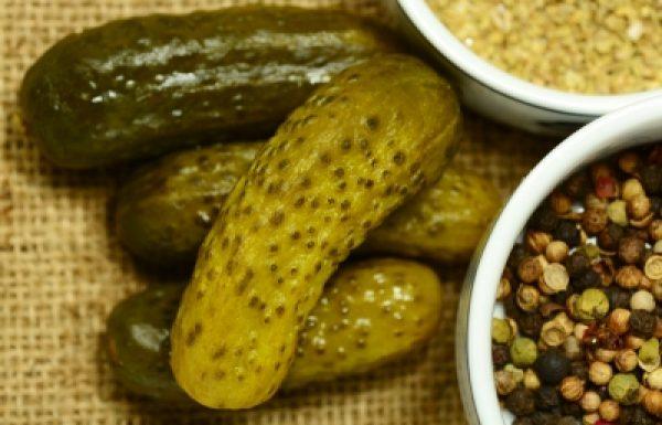 מזונות מותססים – מזון-העל האולטמטיבי