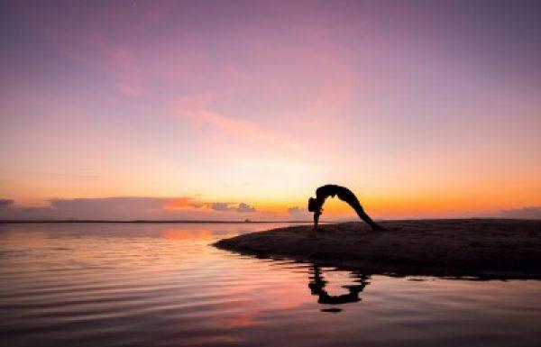 """הגוף כראי למהות פנימית-אבחון גוף ע""""פ הטיפול התנועתי ואומנות היוגה"""
