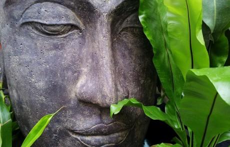 חדר כושר לתודעה – על מדיטציה זן-בודהיסטית